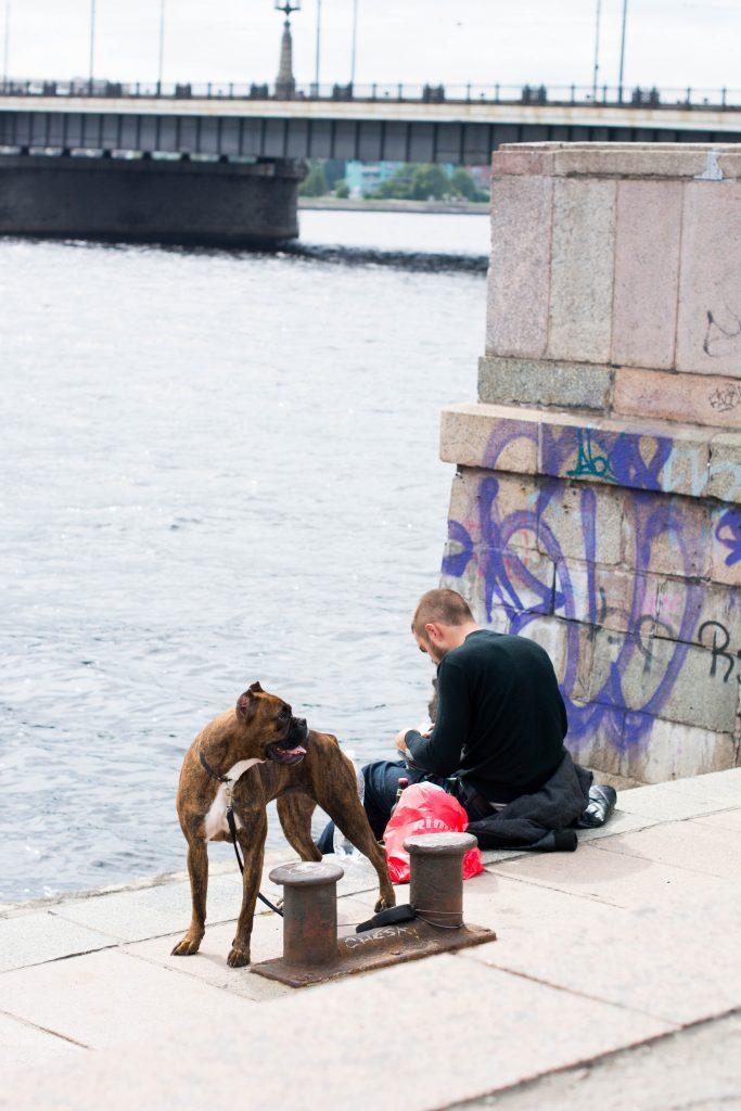 Riga, 2016